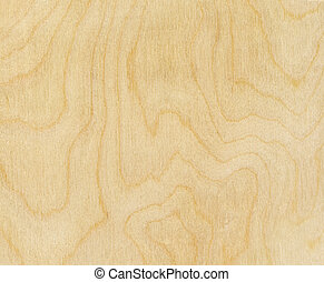 bois,  texture, bouleau