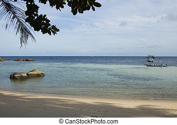 Beach on Koh Tao island, Thailand - Beach near the harbour,...