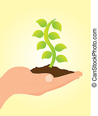 hand holding plant over yellow background vector...