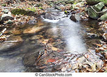 Watercourse - Long exposure, about a small stream, deep in...