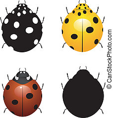 Set vector illustration of ladybird
