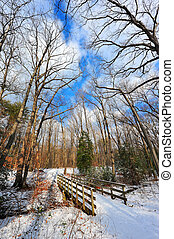Snow covered wooden bridge over stream in Maryland - Snow...