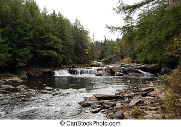 Wild River in Swallow Falls Maryland - Wild river in Swallow...