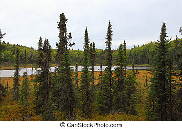 Hidden Alaskan Lake in Autumn - Hidden Lake in wilderness of...