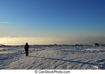 Person with shadow on frozen Alaska landscape - A person...
