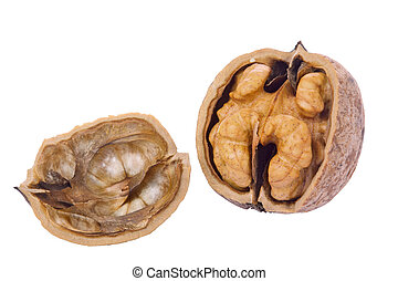 Walnut - Cracked walnut isolated on white
