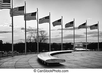 American Flags with the Lincoln Memorial in the Background -...