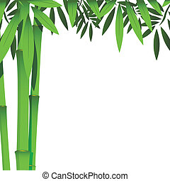 bamboo - illustration, the green bamboo stems on white...