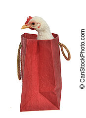 Little chicken sitting inside the shopping bag, isolated