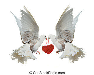 Two white doves holding red heart with their beaks