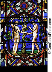 Stained glass window of Adam and Eve - Stained glass window...