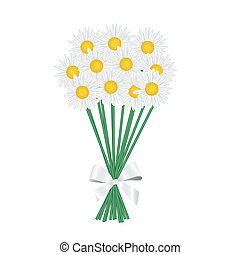 a posy of daisies tied with a white ribbon. Vector...