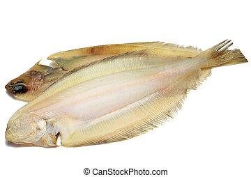 pez, secado, platija