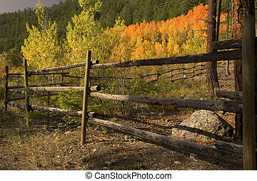 Fenceline in fall - Artistic view of fenceline with fall...