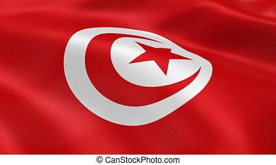 Tunisian flag waving in the wind. Part of a series.