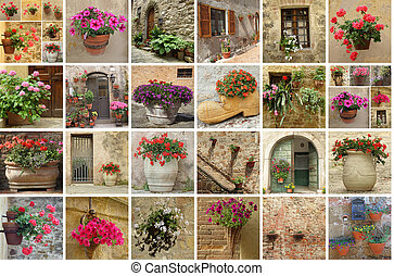 gardening collage - collage with flowery walls, terraces and...