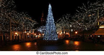 Kerstboom in de Stad