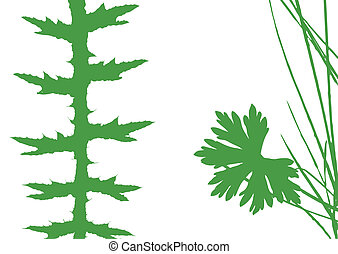 herb silhouette on white background, vector illustration