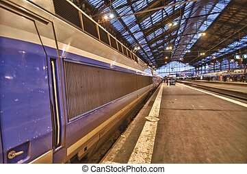 Train in Paris Station - Train in the Gare de Lyon, Paris