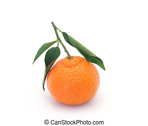 Clementines with leaves on white