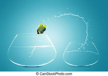 Anglefish jumping to Big bowl, Good Concept for new life,...