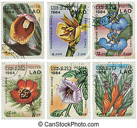 Set of stamps with flowers