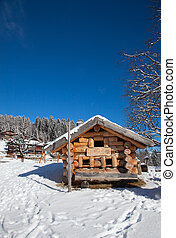 Winter landscape - Typical swiss winter season landscape...