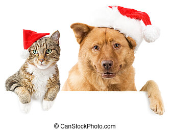Cat and Dog banner for the holidays - Cat and Dog with red...