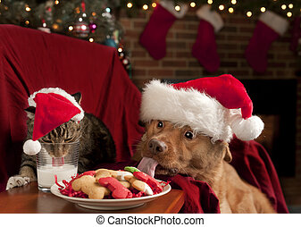 Cat and Dog devouring Santas cookies and milk - Cat and Dog...