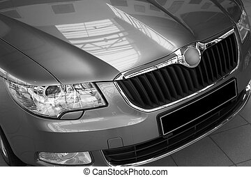 motor-car headlight and grate of radiator on a gray car