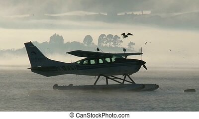 Float plane misty morning - Float plane on Lake Rotorua on a...