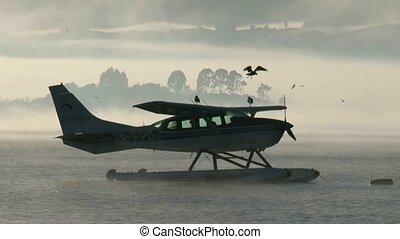 Float plane misty morning - Float plane on Lake Rotorua on a...