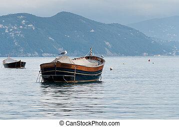 Goitre, Portofino