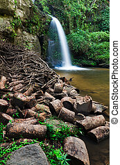 The timber front of  beauty of a waterfall