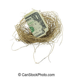 Bird nest with dollar bill - A small birds nest with a...