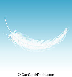 White feather fall from the sky - White feather falling from...