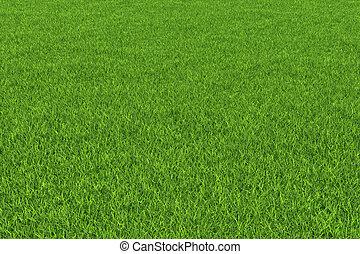 Grass background.