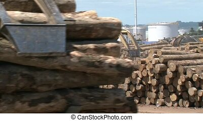 Loading logs at Port Facility - Machinery getting logs ready...