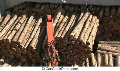 Loading logs to ships hold - Machinery getting logs ready to...