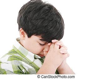 Um, meninos, prays, earnestly, seu, Criador, céu