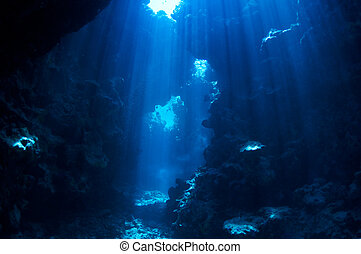 underwater background - underwater landscape. cave in the...
