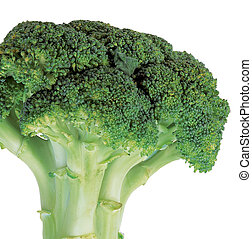 broccoli - fresh raw broccoli on white background