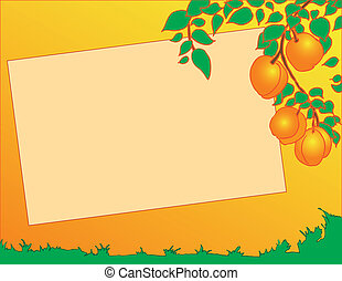 Peaches on a tree - Vector illustration of peaches on a tree...