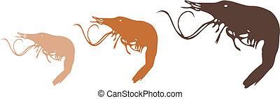 Shrimps - 3 yummy shrimps food illustration vector line art