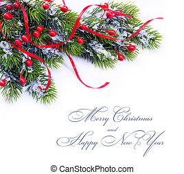 Christmas decoration fir tree branches on white background -...