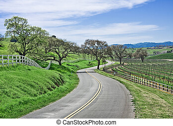 Country Road - A winding country road through California...