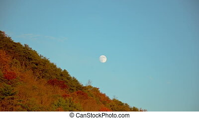 Moon moving across the sky - Time lapse clip of a full moon...