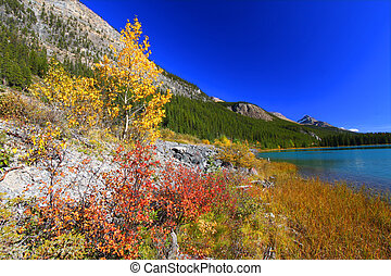 Waterfowl Lakes in Banff Park - Bright fall colors along the...
