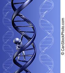 ADN, bebê, fundo