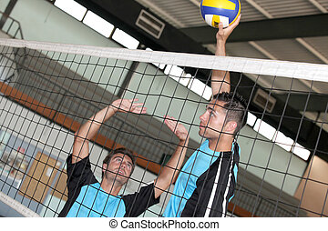 volley-ball players in action